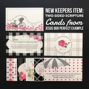 "Check Out our NEW Scripture Card Sets for ""Jesus, Our Perfect Example"" Bible study"