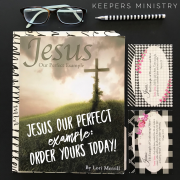 How Should I Respond To (insert issue here)? Jesus, Our Perfect Example Bible Study Teaches You!