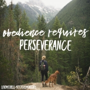 Obedience Requires Perseverance