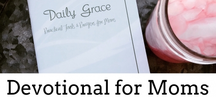 Daily Grace Devotional for Moms SALE