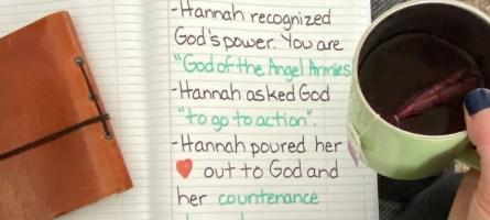 Learning from Hannah