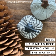 Trusting in the Waiting