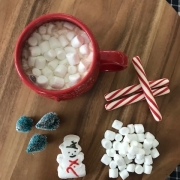 Healthy Hot Cocoa Recipe